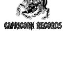 CAPRICORN RECORDS SOUTHERN ROCK SUPER COOL T-SHIRT by westox