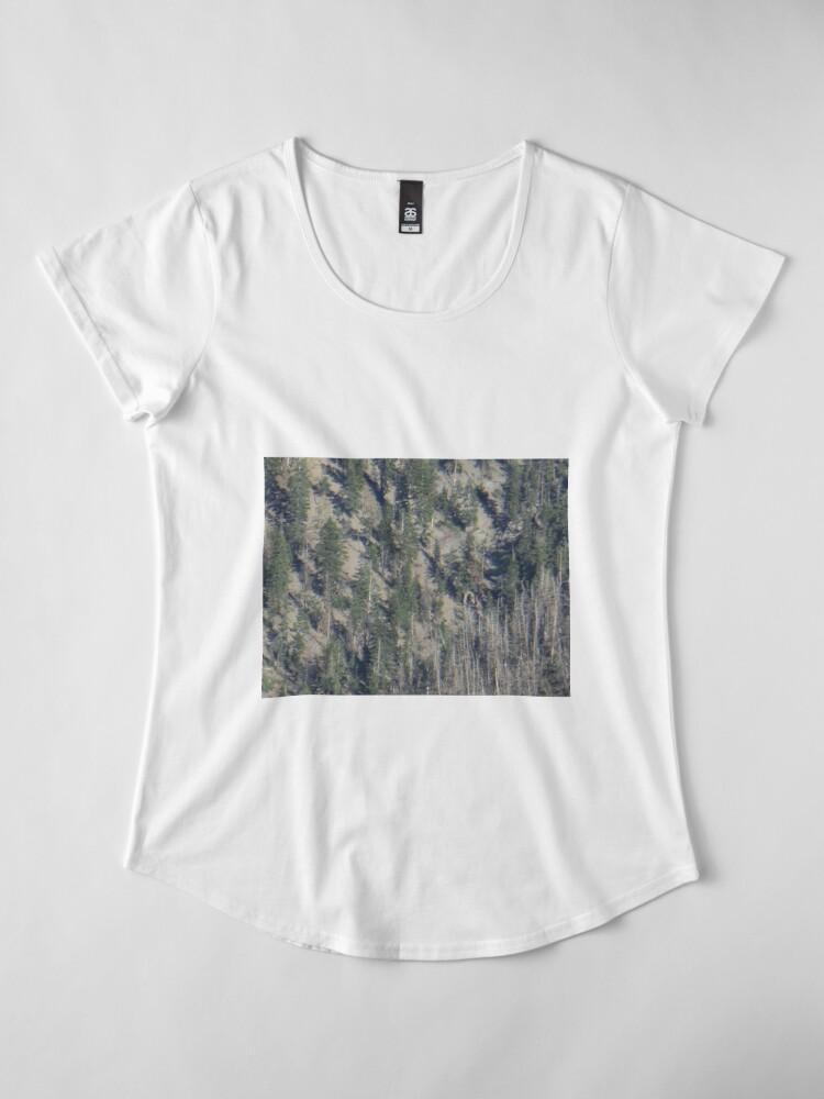 Alternative Ansicht von Frühlingsgebirgs-Waldlandschaft Premium Rundhals-Shirt