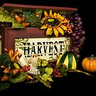 Bountiful Harvest by Maria Dryfhout