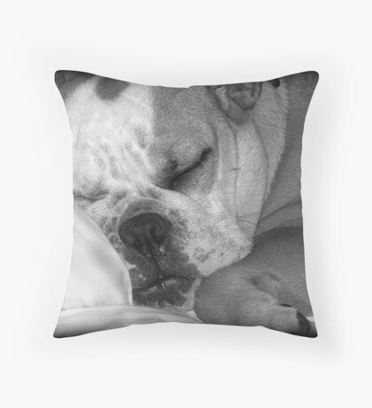 Lazy Days! Throw Pillow