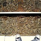 Waiting for a train by Ameel Khan