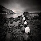Lake Tekapo by Steve Allsopp