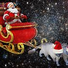 Meow-ry Christmas! by Carol Bleasdale