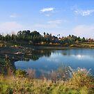 Quarry Lakes by Ellen Cotton
