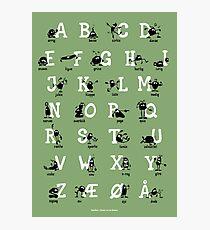 Alfabet - Grøn Photographic Print
