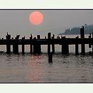 Sunset Through Smoke Filled Skies by Betsy  Seeton