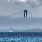 Bridging the mist ! by Nancy Richard