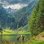 Seealpsee Switzerland by Susan Dost