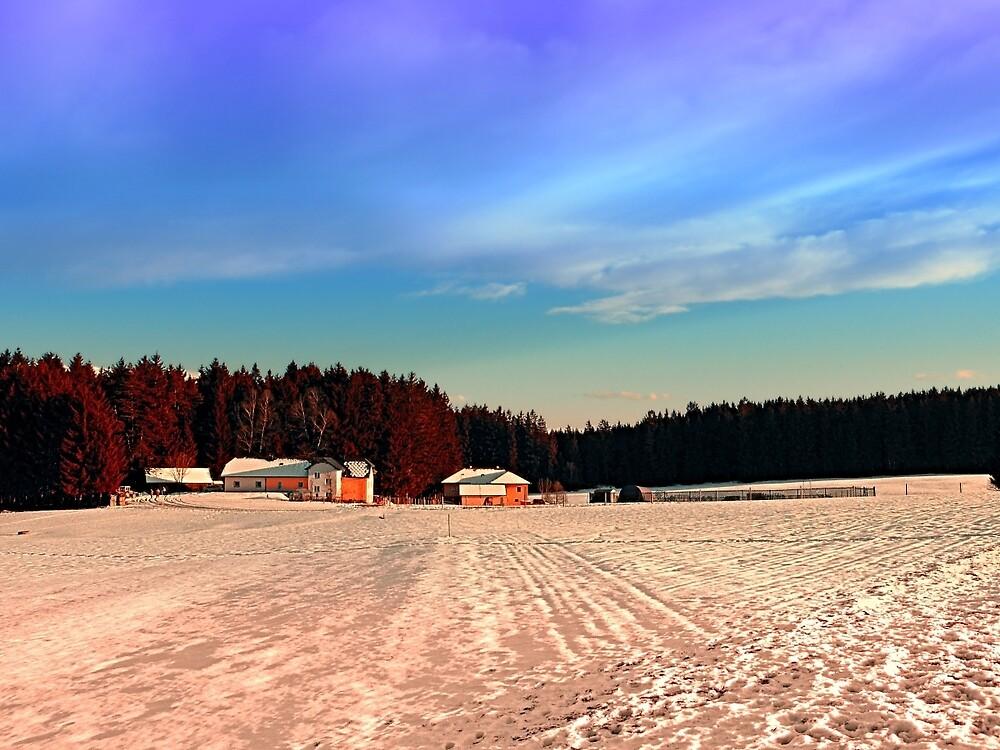 Amazing vivid winter wonderland   landscape photography by Patrick Jobst
