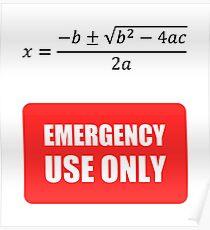 Nutzlose Mathematik Poster
