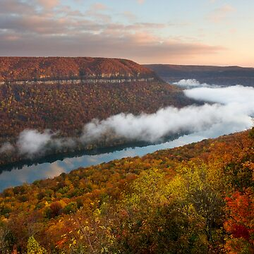 Tennessee River Gorge - Chattanooga, Tennessee by alexzuccarelli