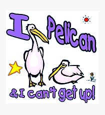 I Pelican & I Can't Get Up Photographic Print