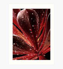 Burgundy Plant Art Print