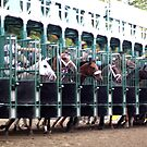 ... and they're off! - Saratoga Race Course NY by eelsblueEllen