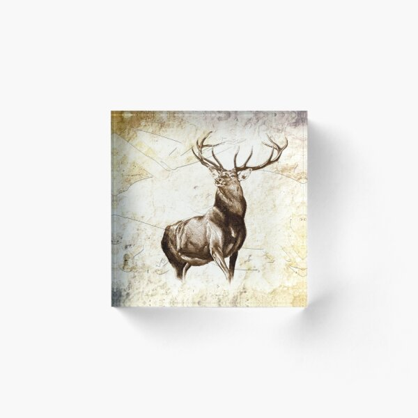 antique stag art drawing handmade nature Acrylic Block