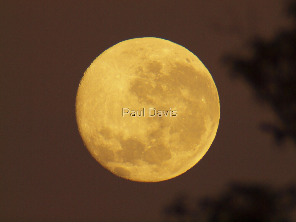 Fathers Day Moon by Paul Davis