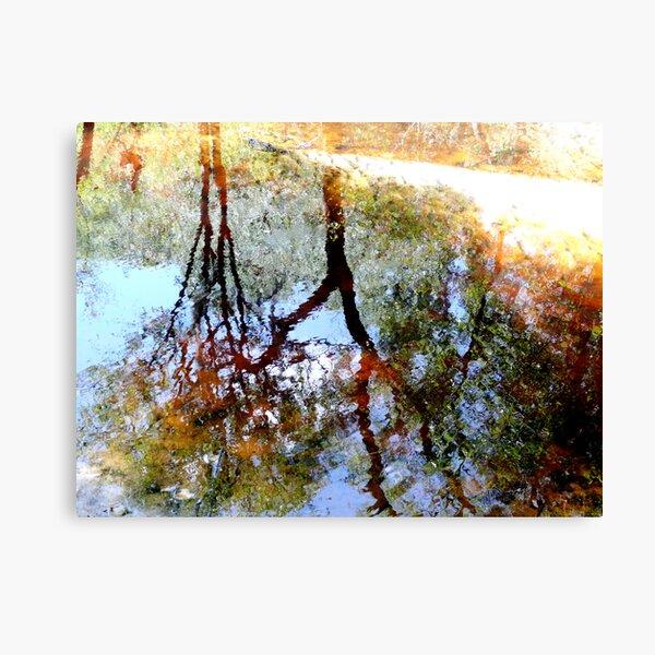 Nature's Mirror Canvas Print