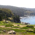 View from Timber Cove Inn by LindaJBazor