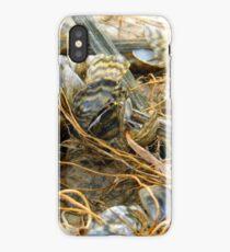 Zebra Mussels iPhone Case
