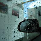 Rain Drops by vonb