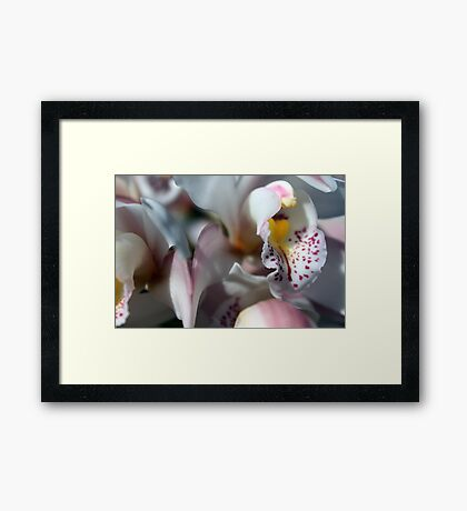 Orchid Abstract Framed Print
