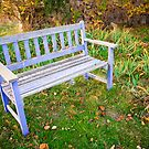 The pale blue bench at Black Springs Bakery by Elana Bailey