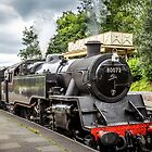 Steam Engine Llangollen Station by StephenRphoto