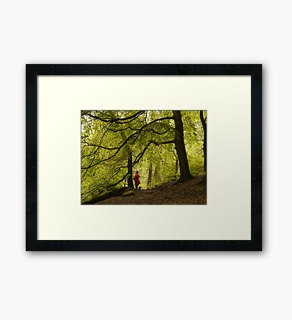 I thought Leprechauns were Green Framed Print