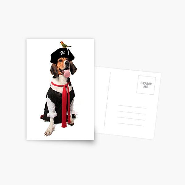 Pirate Princess Postcard