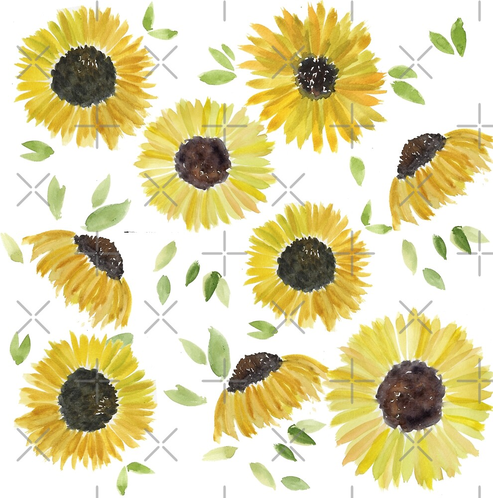 Sunflowers by Rosemary Stanley