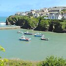Port Isaac harbour, Cornwall by Tizz07