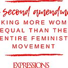 Second Amendment Equality by ExpressionsMag