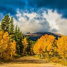Fall Rocky Mountain Road  by Gregory J Summers