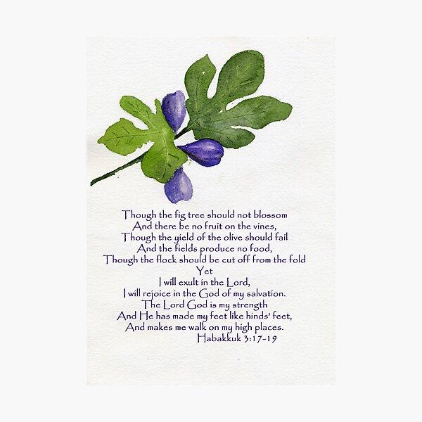 Hope - Habakkuk 3:17-19   Photographic Print