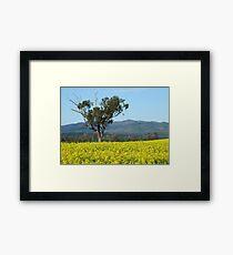 Blue and Gold Framed Print