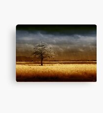 And the rains came..... Canvas Print