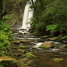 Hopetoun Falls by Tony Middleton