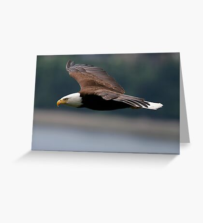 Cruising at Altitude Greeting Card