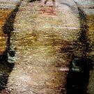 Persephone's Descent by Anne  McGinn