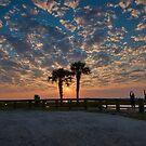 Morse Park Landing Sunrise  by TJ Baccari Photography