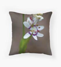 Warrandyte Wildflower Throw Pillow