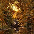 Reflections on October by Jessica Jenney