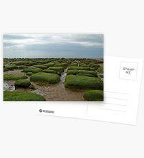 Hunstanton, Norfolk Postcards