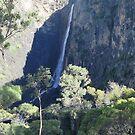 Dangar Falls 1 by TonyMM
