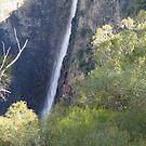 Dangar Falls 3 by TonyMM