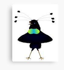 Bop the Ballerina Bird Canvas Print