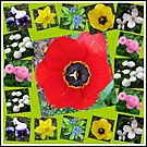 Spring Has Sprung Collage von BlueMoonRose