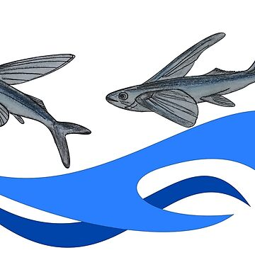Flying Fish by leororing