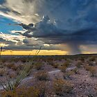 Storm Clouds Over El Paso, Texas and Southern New Mexico by Ray Chiarello