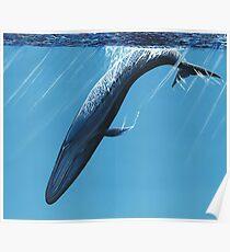 Diving Blue Poster